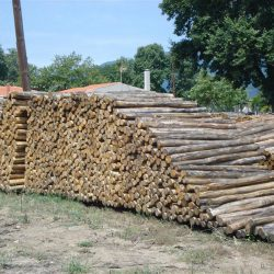 Λεπτή στρογγύλη ξυλεία καστανιάς Αγίου Όρους