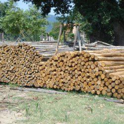 Πελεκητή ξυλεία